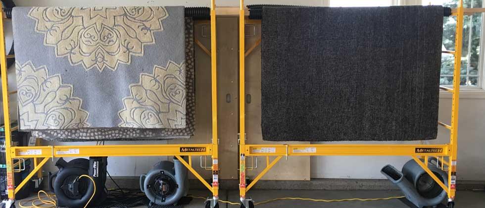 mwsc-slides-area-rug